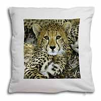 Baby Cheetah Soft Velvet Feel Scatter Cushion