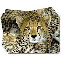 Baby Cheetah Picture Placemats in Gift Box
