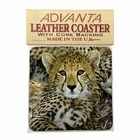 Baby Cheetah Single Leather Photo Coaster Perfect Gift