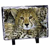 Baby Cheetah Photo Slate Christmas Gift Idea