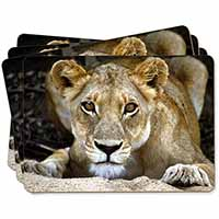 Lioness Picture Placemats in Gift Box