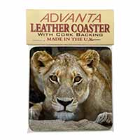 Lioness Single Leather Photo Coaster Perfect Gift
