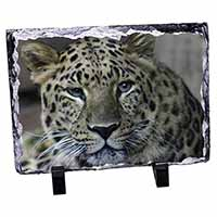 Leopard Photo Slate Christmas Gift Idea