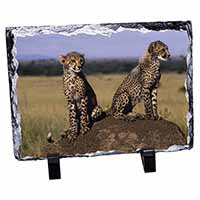 Cheetahs on Watch Photo Slate Photo Ornament Gift