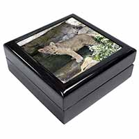 Lion Cub Keepsake/Jewellery Box Birthday Gift Idea