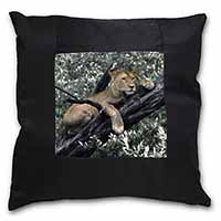 Lioness in Tree Black Border Satin Feel Scatter Cushion