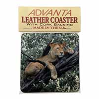 Lioness in Tree Single Leather Photo Coaster Perfect Gift