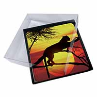 4x Leopard Picture Table Coasters Set in Gift Box