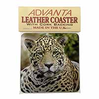 Leopard Single Leather Photo Coaster Animal Breed Gift