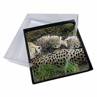 4x Cheetah and Newborn Babies Picture Table Coasters Set in Gift Box