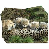 Cheetah and Newborn Babies Picture Placemats in Gift Box