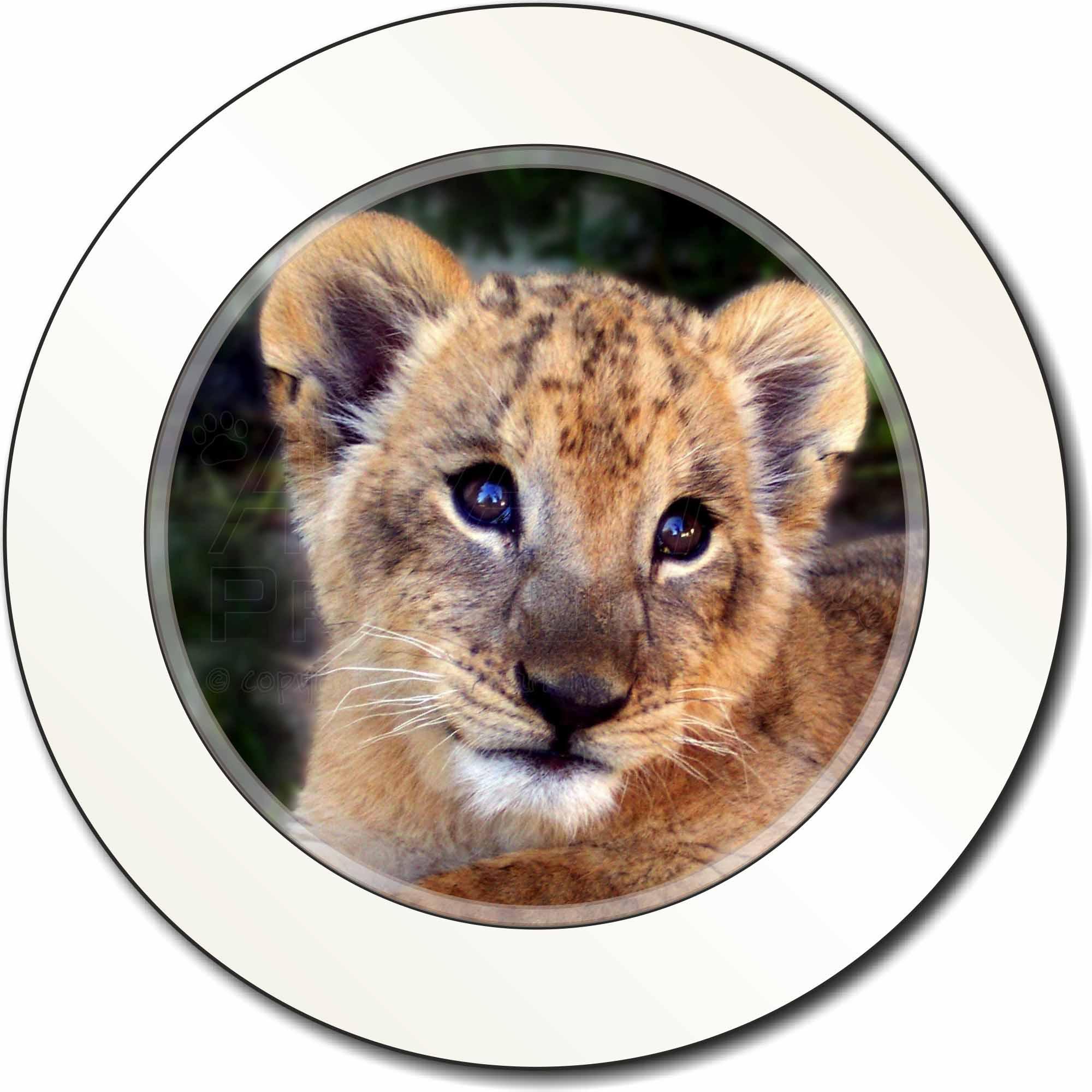 Adhesive Baby Lion Cub Ref