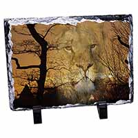 Lion Spirit Watch Photo Slate Christmas Gift Idea