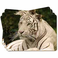 White Tiger Picture Placemats in Gift Box