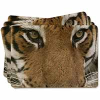 Face of a Bengal Tiger Picture Placemats in Gift Box