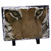 Face of a Bengal Tiger Photo Slate Christmas Gift Idea