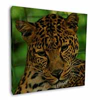"A Gorgeous Leopard 12""x12"" Wall Art Canvas Picture"