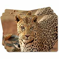 Leopard Picture Placemats in Gift Box