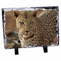 Leopard Photo Slate Photo Ornament Gift