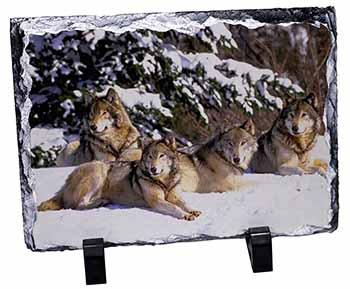 Wolves in Snow Photo Slate Christmas Gift Idea