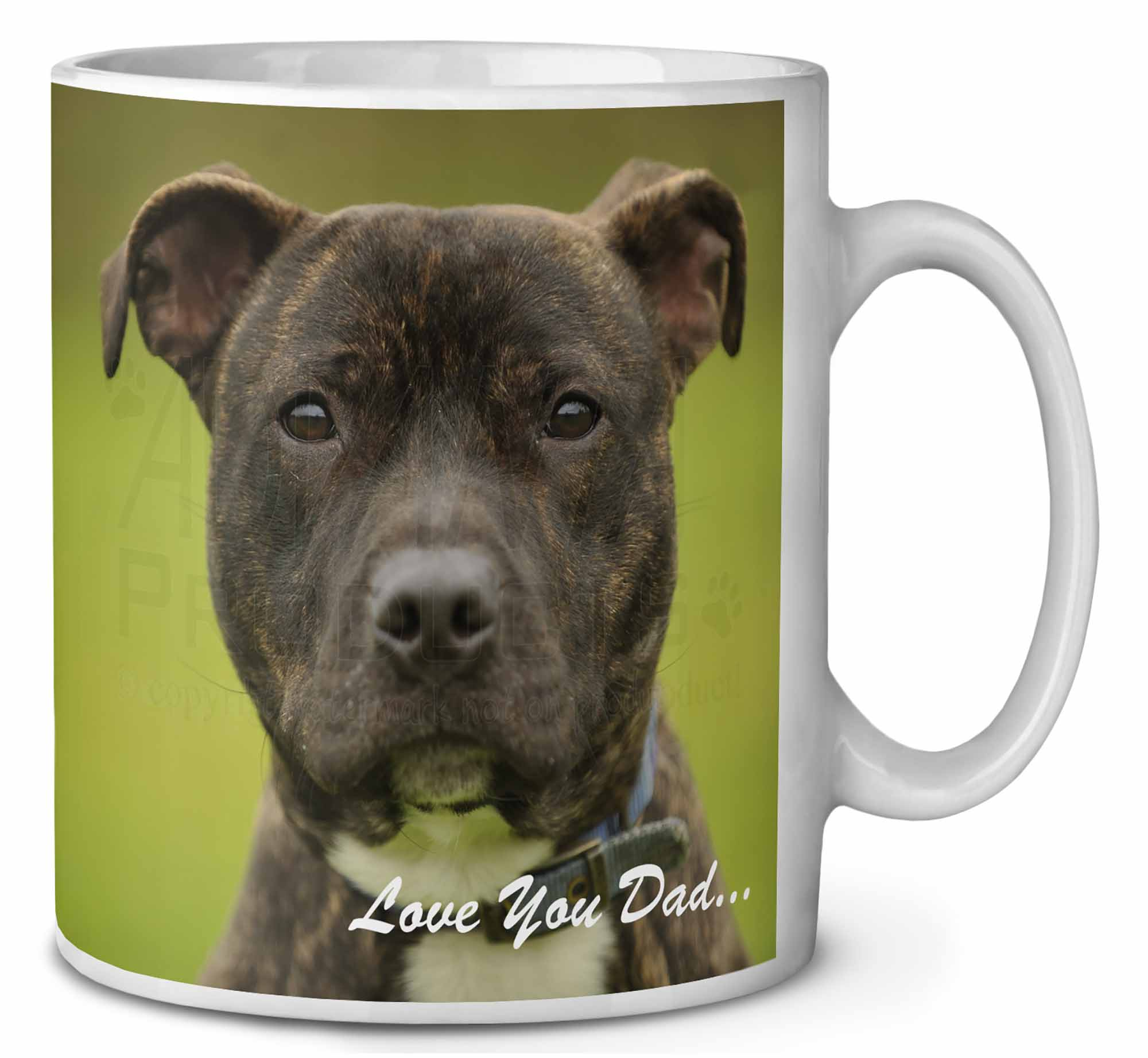 Staffie Dog /'Love You Dad/' Photo Snow Globe Waterball Stocking Filler DAD-101GL