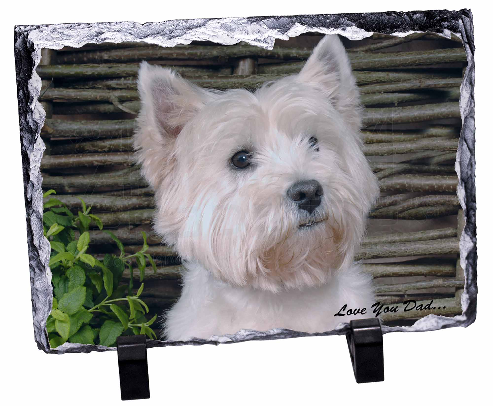 DAD-131SC Westie Dog /'Love You Dad/' Single Leather Photo Coaster Animal Breed G