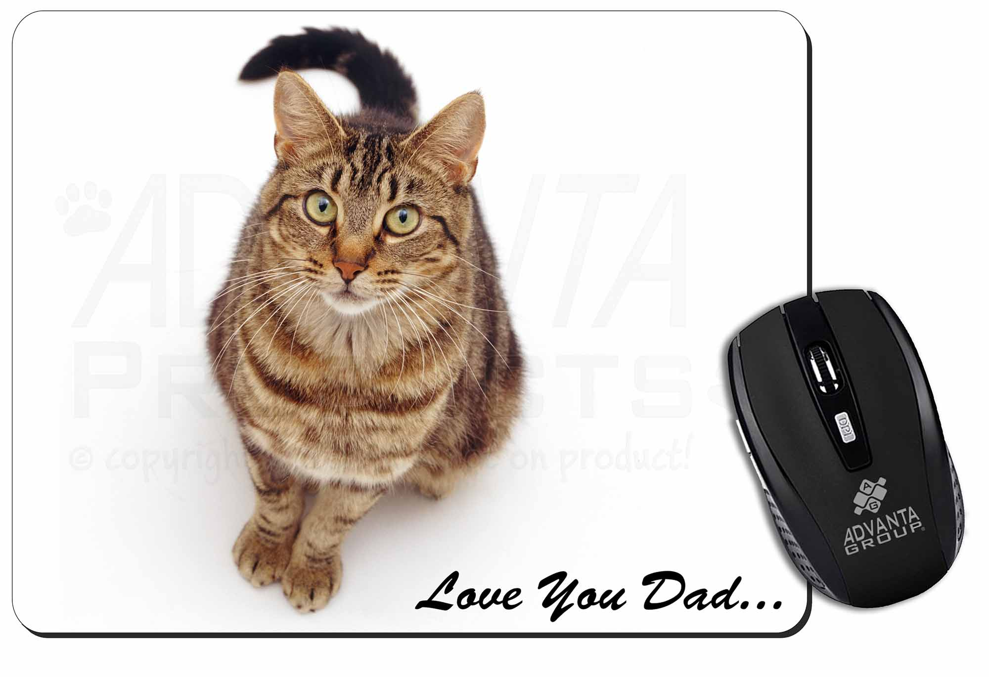 cat lovers gift ideas