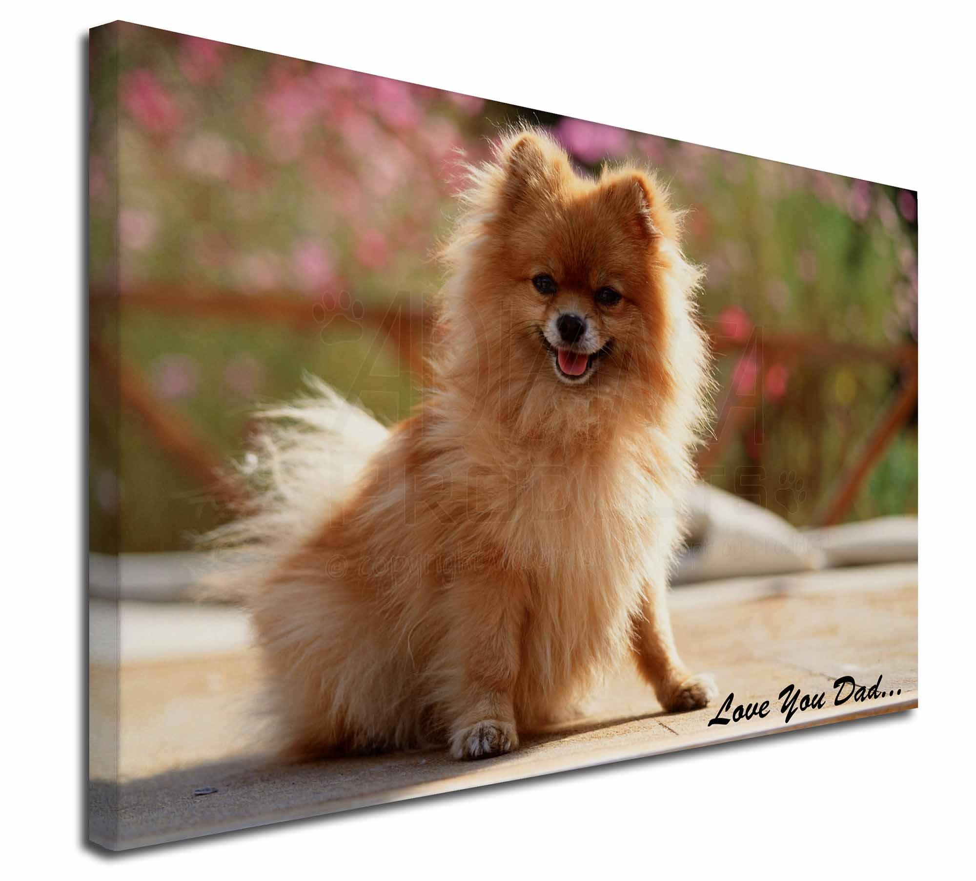 Pomeranian Dog 'Love You Dad' 30\
