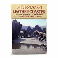 Dinosaur Print Single Leather Photo Coaster Perfect Gift