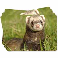 Polecat Ferret Picture Placemats in Gift Box