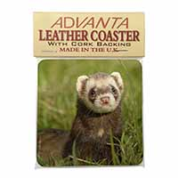 Polecat Ferret Single Leather Photo Coaster Animal Breed Gift