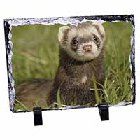 Polecat Ferret Photo Slate Christmas Gift Ornament