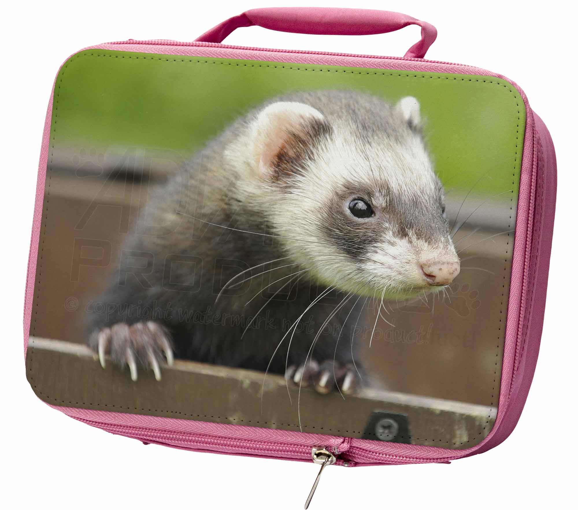 Ferret Print Picture Placemats in Gift Box FER-2P