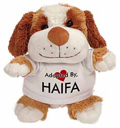 Adopted By HAIFA Cuddly Dog Teddy Bear Wearing a Printed Named T-Shirt
