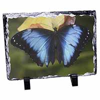 Butterflies Photo Slate Photo Ornament Gift