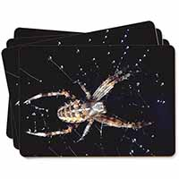 Spider on His Dew Drop Web Craft Picture Placemats in Gift Box