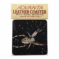 Spider on His Dew Drop Web Craft Single Leather Photo Coaster Perfect Gift