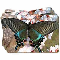 Black and Blue Butterfly Picture Placemats in Gift Box