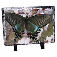 Black and Blue Butterfly Photo Slate Photo Ornament Gift