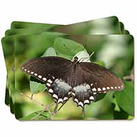 Butterflies, Brown Butterfly Picture Placemats in Gift Box