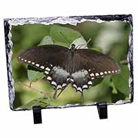 Butterflies, Brown Butterfly Photo Slate Christmas Gift Ornament