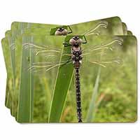 Dragonfly Print Picture Placemats in Gift Box
