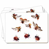 Flying Ladybirds Picture Placemats in Gift Box