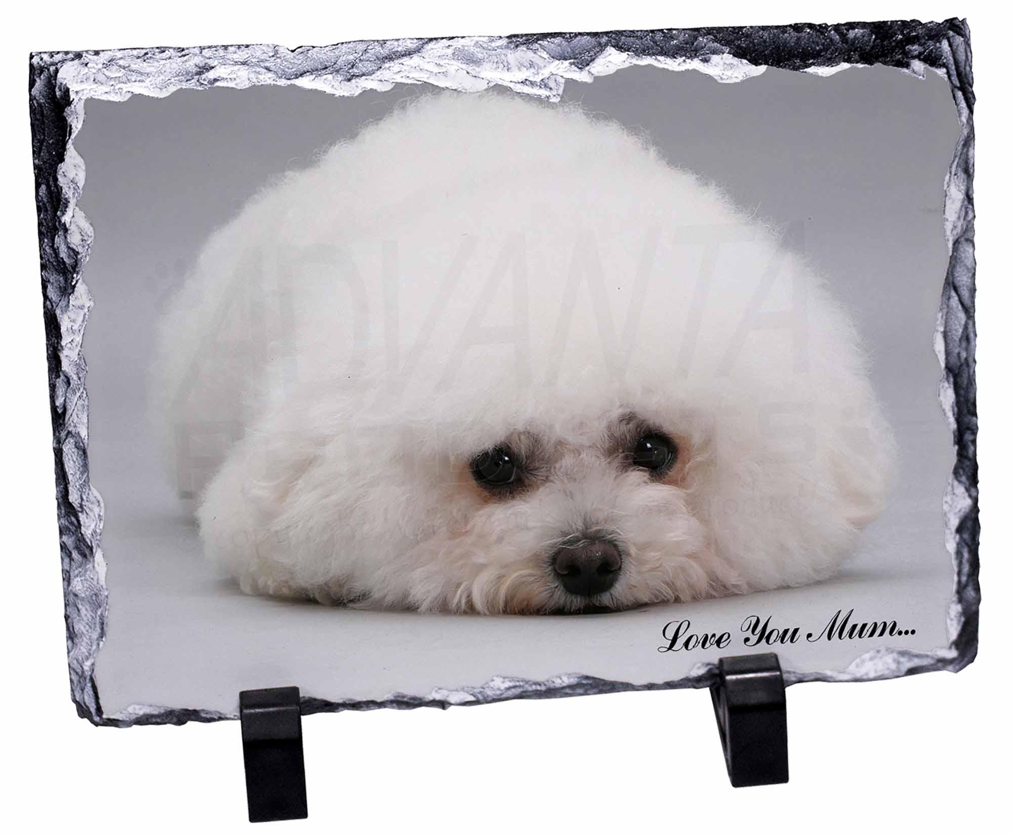 MUM-D2SL Bichon Frise Dog /'Love You Mum/' Photo Slate Christmas Gift Ornament