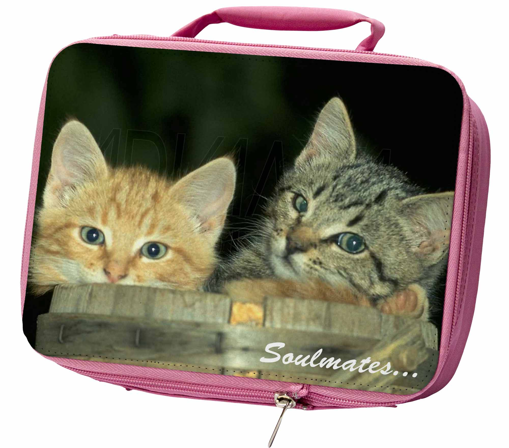 'soulmates' Kittens In Beer Barrel Insulated Pink School Lunch Box B, Soul-14lbp Bianchezza Pura