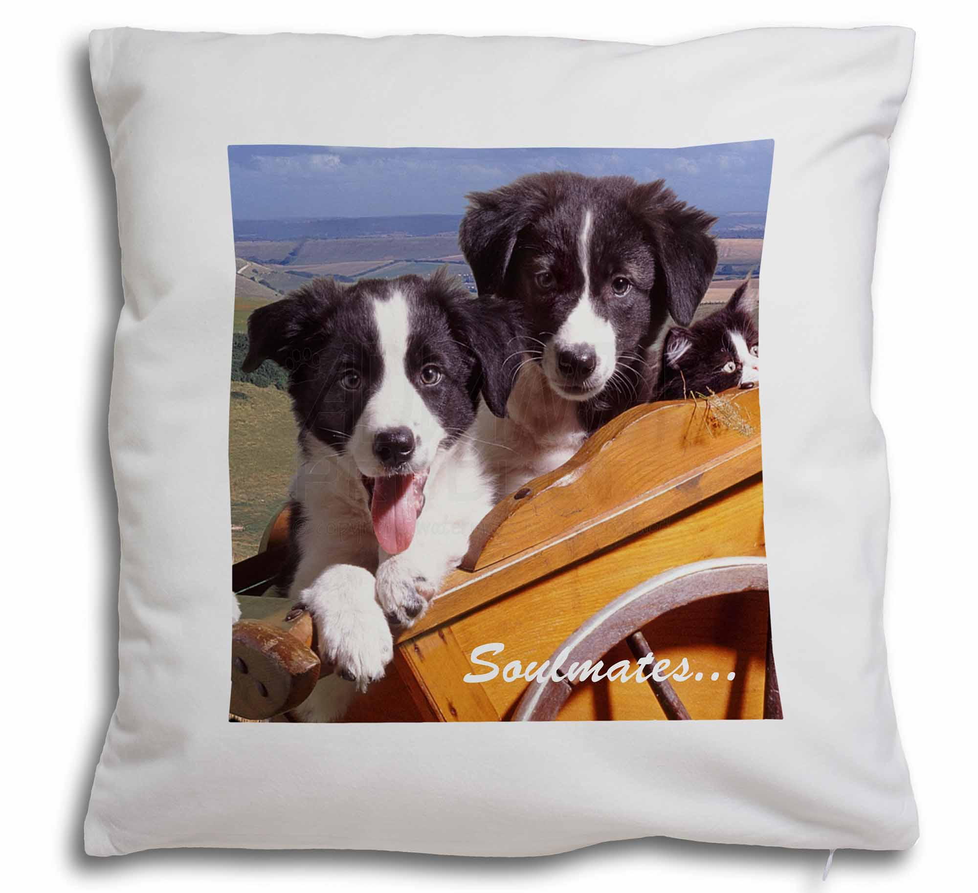 Border Collie Throw Pillow Case Dog Puppy