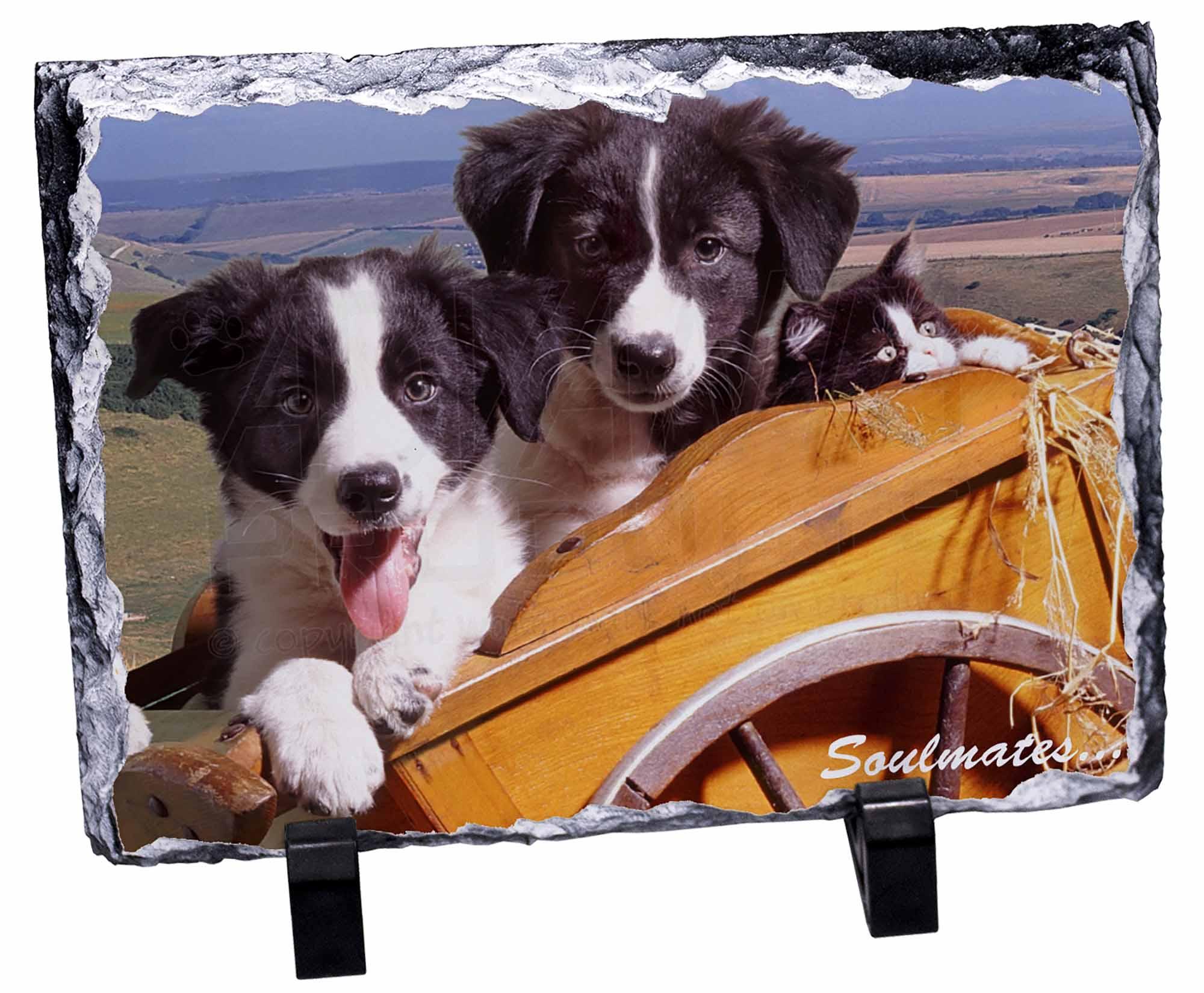 Border Collie Puppies /'Soulmates/' Bookmark Book Mark Christmas Stock SOUL-24BM