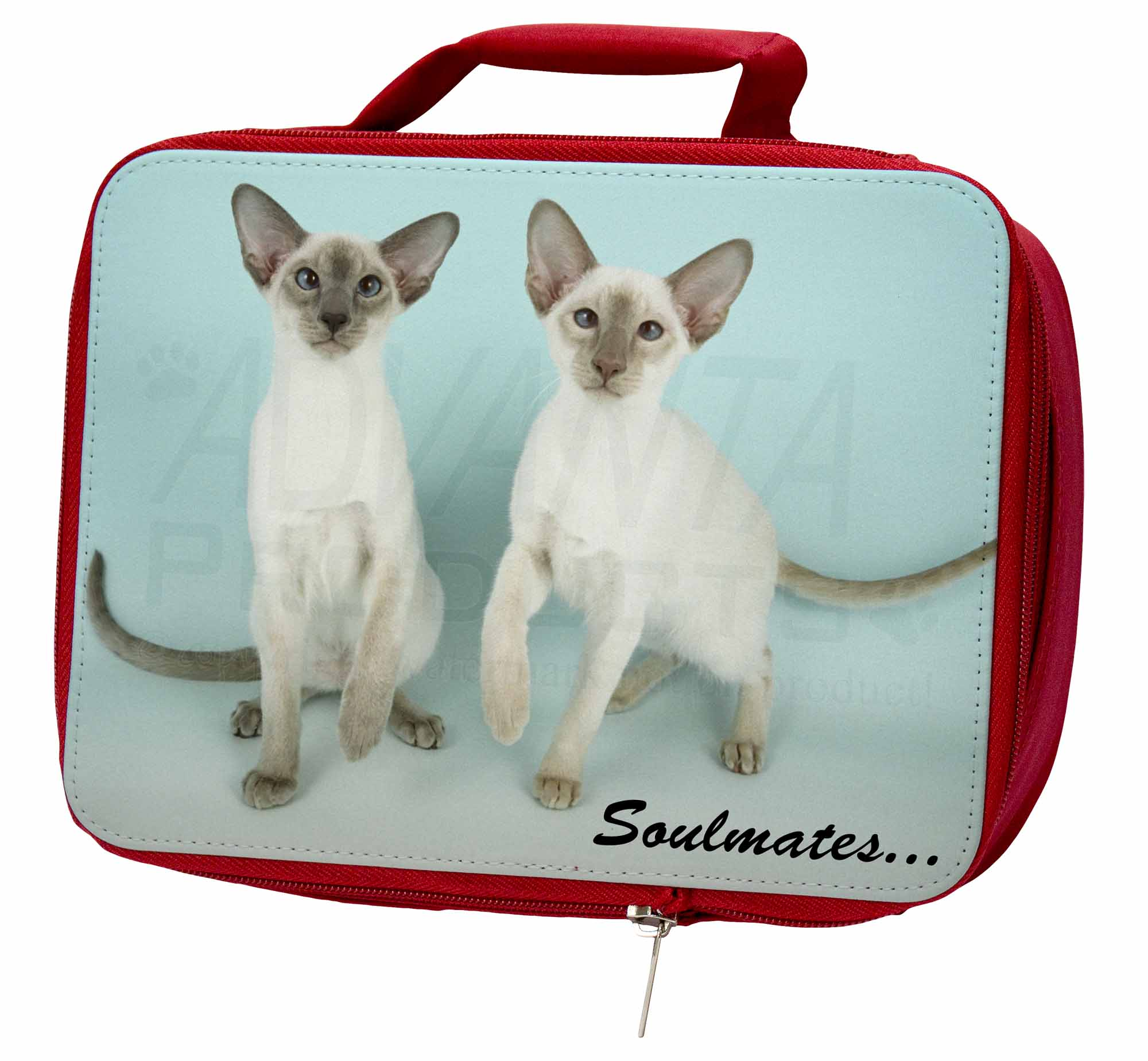Siamese Cats Insulated 'Soulmates' Sentiment Insulated Cats Red School Lunch Box/Pic, SOUL-2LBR cab4ad