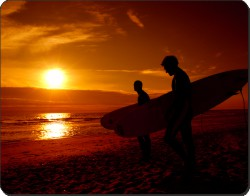 Sunset Surf, SPO-S1