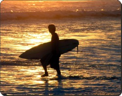 Sunset Surf, SPO-S2